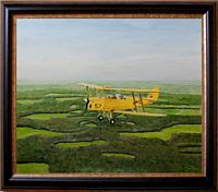Tiger Moth_tn